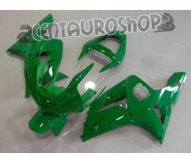 Carena in ABS Kawasaki ZX-6R Ninja 636 03-04 colorazione Green