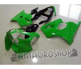Carenatura in ABS Kawasaki ZX-6R Ninja 636 2000 2002 Green and Black