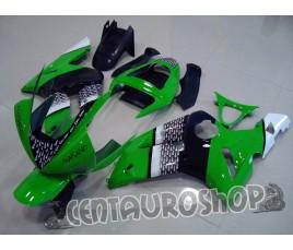 Carena Kawasaki ZX6R Ninja 636 03 04 Green Nakano MotoGP replica