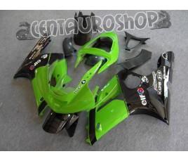 Carena ABS Kawasaki ZX6R Ninja 636 03 04 Green & Black SBK Replica
