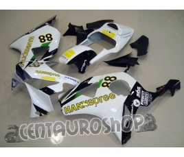 Carena in ABS Honda CBR 900 RR 954 02-03 colorazione Hannspree