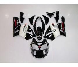 Carena in ABS Kawasaki ZX-12R Ninja 02-06 West Capirossi MotoGP